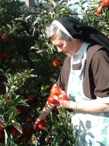 Sr Marias Apples